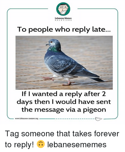 Lebanese: Lebanese Memes  SOLUTIONS  To people who reply late...  If I wanted a reply after 2  days then I would have sent  the message via a pigeon  -www1ebanese.memes.org Tag someone that takes forever to reply! 🙃 lebanesememes
