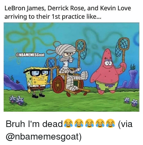 Bruh, Derrick Rose, and Kevin Love: LeBron James, Derrick Rose, and Kevin Love  arriving to their 1st practice like...  @NBAMEMESGoat Bruh I'm dead😂😂😂😂😂 (via @nbamemesgoat)
