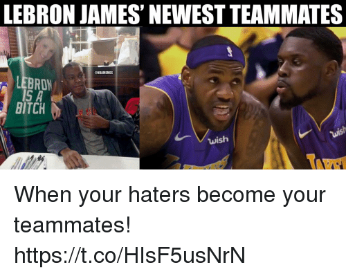 Bitch, LeBron James, and Memes: LEBRON JAMES' NEWEST TEAMMATES  @NBAMEMES  LEBRON  BITCH  wish When your haters become your teammates! https://t.co/HIsF5usNrN