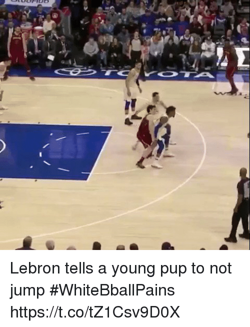 Basketball, White People, and Lebron: Lebron tells a young pup to not jump #WhiteBballPains https://t.co/tZ1Csv9D0X