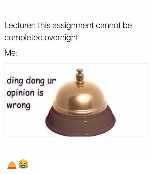Dingly: Lecturer: this assignment cannot be  completed overnight  Me:  ding dong ur  opinion is  wrong 🛎😂