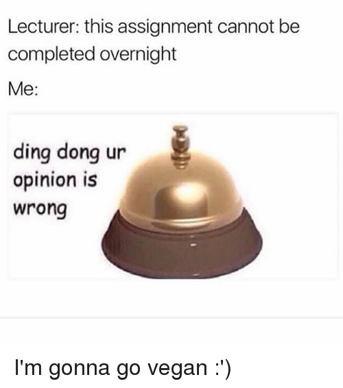 Dingly: Lecturer: this assignment cannot be  completed overnight  Me:  ding donq ur  ding dong ur  opinion is  wrong I'm gonna go vegan :')