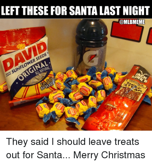 Sunflower Seed: LEFT THESE FOR SANTA LAST NIGHT  @MLBMEME  DAVID  SUNFLOWER SEEDS  ER  RIGINAL  ALL NATURAL They said I should leave treats out for Santa...  Merry Christmas