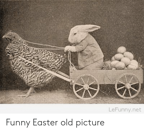 funny easter: LeFunny.net Funny Easter old picture