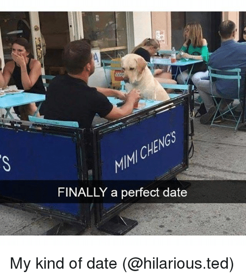 Funny, Ted, and Date: LEG  CHE  FINALLY a perfect date My kind of date (@hilarious.ted)