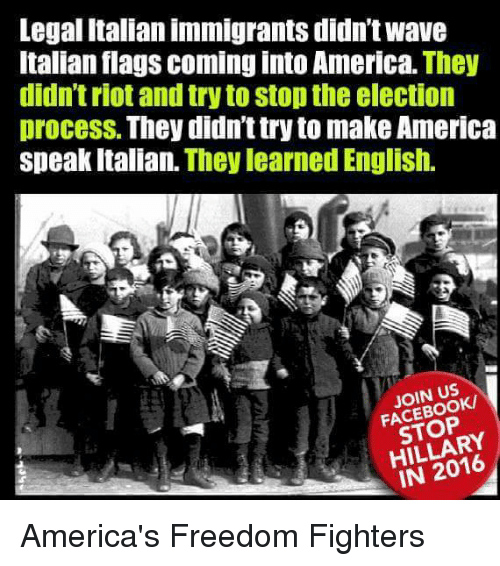 freedom fighter: Legal Italianimmigrants didn't wave  Italian flags coming into America. They  didn't riot and try to stopthe election  process. They didnt try to make America  speak Italian. They learned English.  JOIN US  STOP  RY America's Freedom Fighters