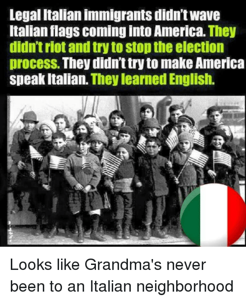 essay on italian immigration to america The 19th century immigrants coming into america, came from many areas of the world many of them wanted to forge new lives in the united states .