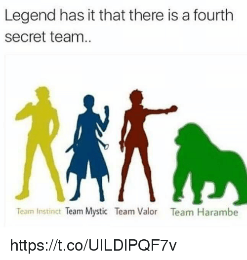 Memes, Instinctive, and Mysticism: Legend has it that there is a fourth  Secret team  Team Instinct  Team Mystic Team Valor  Team Harambe https://t.co/UILDlPQF7v