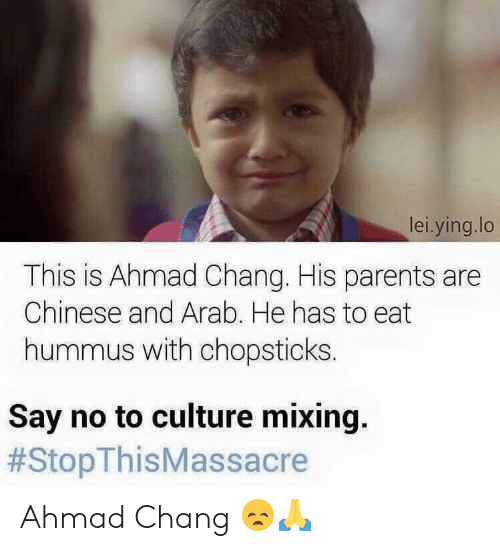 Hummus: lei.ying.lo  This is Ahmad Chang. His parents are  Chinese and Arab. He has to eat  hummus with chopsticks  Say no to culture mixing.  Ahmad Chang 😞🙏