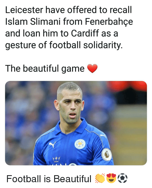 cardiff: Leicester have offered to recall  Islam Slimani from Fenerbahce  and loan him to Cardiff as a  gesture of football solidarity  The beautiful game Football is Beautiful 👏😍⚽️