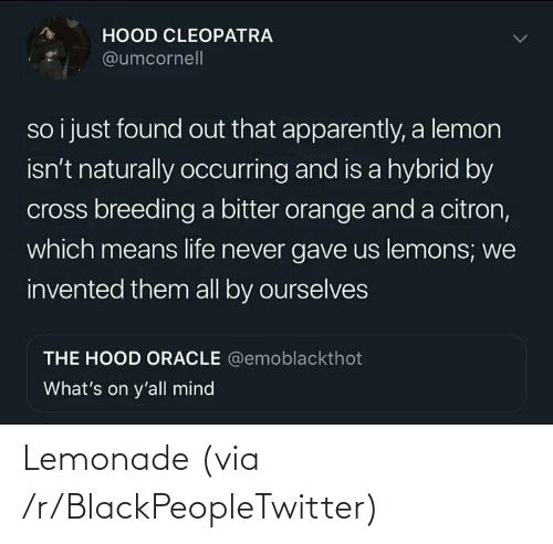 R Blackpeopletwitter: Lemonade (via /r/BlackPeopleTwitter)