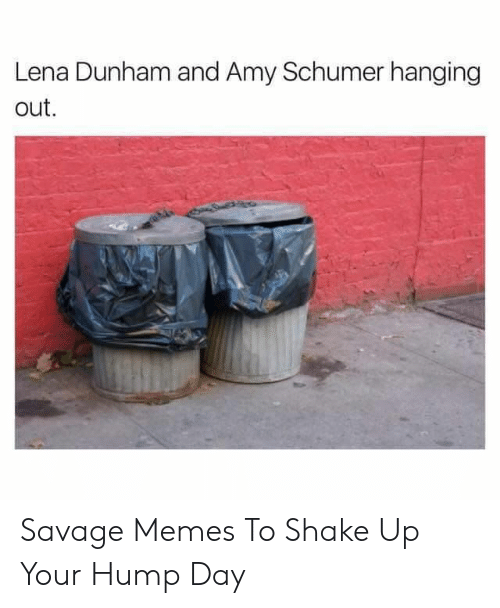 Lena: Lena Dunham and Amy Schumer hanging  out Savage Memes To Shake Up Your Hump Day