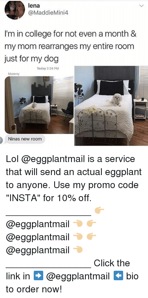 "Click, College, and Lol: lena  @MaddieMini4  I'm in college for not even a month &  my mom rearranges my entire room  just for my dog  Today 2:24 PM  Mommy  Ninas new room Lol @eggplantmail is a service that will send an actual eggplant to anyone. Use my promo code ""INSTA"" for 10% off. ________________ 👉🏼 @eggplantmail 👈🏼 👉🏼 @eggplantmail 👈🏼 👉🏼 @eggplantmail 👈🏼 ________________ Click the link in ➡️ @eggplantmail ⬅️ bio to order now!"