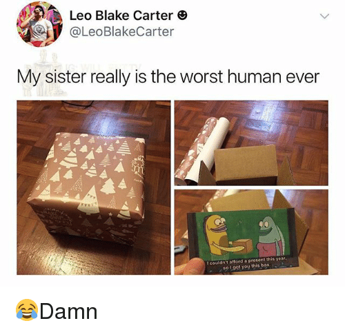 Memes, The Worst, and 🤖: Leo Blake Carter  @LeoBlakeCarter  My sister really is the worst human ever  I couldn't afford a present this year  so lgot you this box 😂Damn