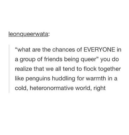 """Warmthness: leongueerwata:  """"what are the chances of EVERYONE in  a group of friends being queer"""" you do  realize that we all tend to flock together  like penguins huddling for warmth in a  cold, heteronormative world, right"""