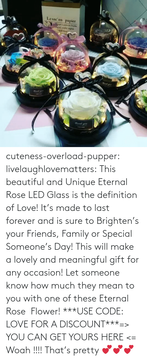 Rose: Lesac en  papier  halke  Fvat for cuteness-overload-pupper:  livelaughlovematters:  This beautiful and Unique Eternal Rose LED Glass is the definition of Love! It's made to last forever and is sure to Brighten's your Friends, Family or Special Someone's Day! This will make a lovely and meaningful gift for any occasion! Let someone know how much they mean to you with one of these Eternal Rose  Flower! ***USE CODE: LOVE FOR A DISCOUNT***=> YOU CAN GET YOURS HERE <=  Woah !!!! That's pretty 💕💕💕