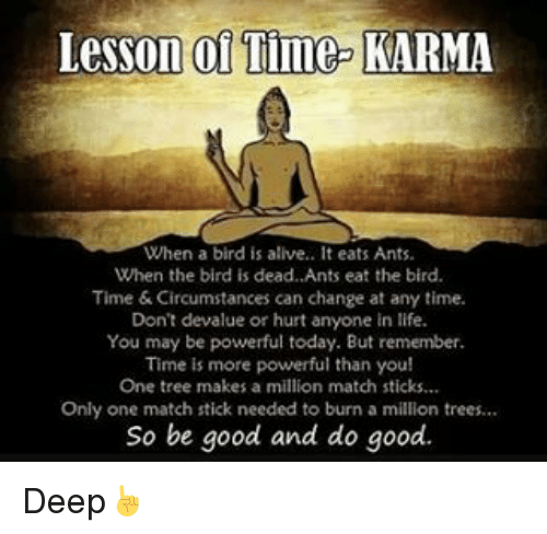Memes, Birds, and Karma: Lesson of Time-  KARMA  When a bird is alive.. It eats Ants.  When the bird is dead. Ants eat the bird.  Time Circumstances can change at any time.  Don't devalue or hurt anyone in life.  You may be powerful today. But remember.  Time is more powerful than you  One tree makes a million match sticks...  Only one match stick needed to burn a million trees...  So be good and do good. Deep☝