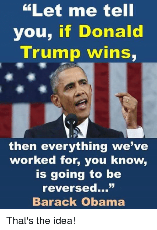 "Donald Trump, Memes, and Obama: ""Let me tell  you, if Donald  Trump wins,  then everything we've  worked for, you know,  is going to be  reversed...""  Barack Obama That's the idea!"