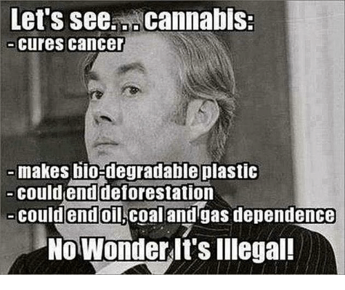degradation: Let S See.L cannabis.  cures cancer  makes bio-degradable plastic  could end deforestation  could end  Oil Coal and gas dependence  No Wonder It's Illegal!