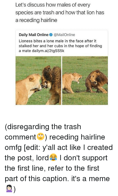 Referance: Let's discuss how males of every  species are trash and how that lion has  a receding hairline  Daily Mail Online @MailOnline  Lioness bites a lone male in the face after it  stalked her and her cubs in the hope of finding  a mate dailym.ai/2tgSS5k (disregarding the trash comment🙄) receding hairline omfg [edit: y'all act like I created the post, lord😂 I don't support the first line, refer to the first part of this caption. it's a meme🤷🏻‍♀️)