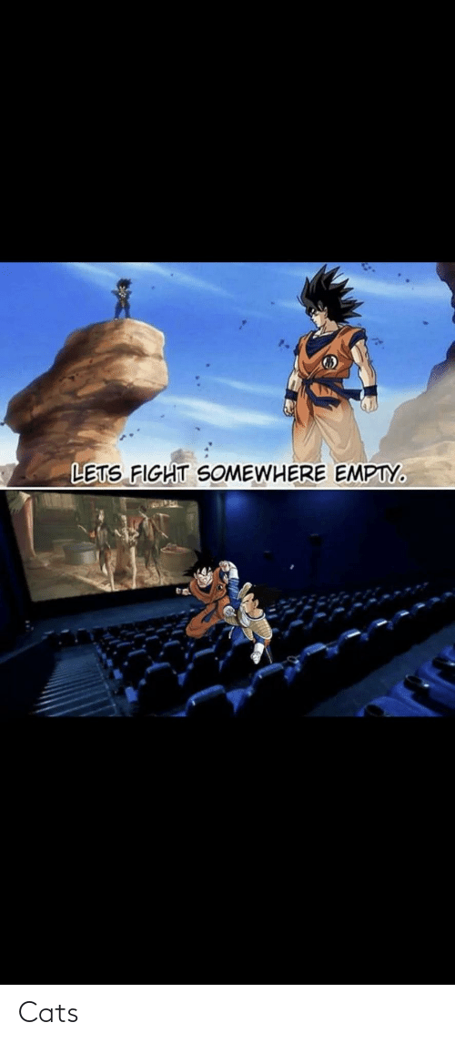 empty: LETS FIGHT SOMEWHERE EMPTY. Cats