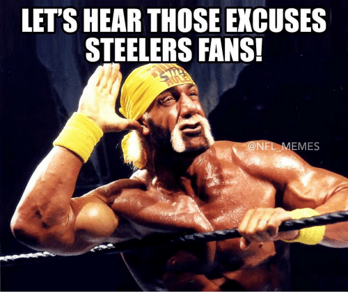 steeler: LET'S HEAR THOSE EXCUSES  STEELERS FANS!  EMES