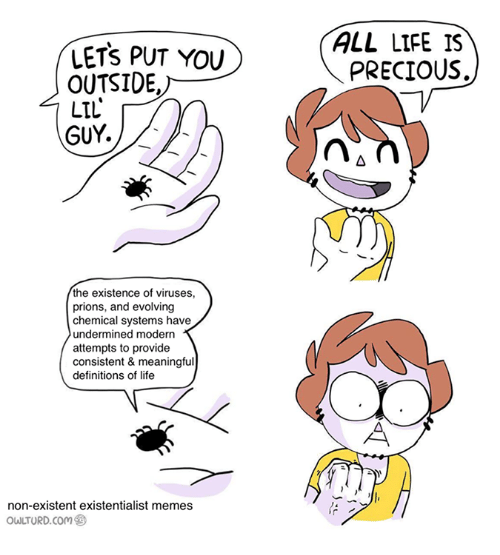 Life, Memes, and Precious: LETS PUT YOU  OUTSIDE,  LIL  GUY.  the existence of viruses,  prions, and evolving  chemical systems have  undermined modern  attempts to provide  consistent & meaningful  definitions of life  non-existent existentialist memes  owLTURD com  ALL LIFE IS  PRECIOUS.
