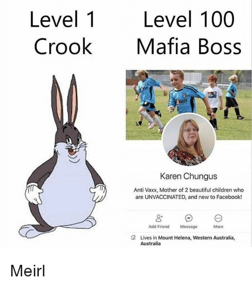 Chungus: Level 1  Crook  Level 100  Mafia Boss  Karen Chungus  Anti Vaxx, Mother of 2 beautiful children who  are UNVACCINATED, and new to Facebook!  Add Friend  Message  More  Lives in Mount Helena, Western Australia,  Australia Meirl