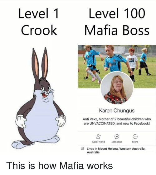 Chungus: Level 1  Crook  Level 100  Mafia Boss  NDER  Karen Chungus  Anti Vaxx, Mother of 2 beautiful children who  are UNVACCINATED, and new to Facebook!  0+  Add Friend  Message  More  Lives in Mount Helena, Western Australia,  Australia This is how Mafia works