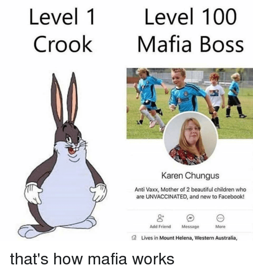 Chungus: Level 1 Level 100  CrookMafia Boss  Karen Chungus  Anti Vaxx, Mother of 2 beautiful children who  are UNVACCINATED, and new to Facebook!  Add Friend Message  More  Lives in Mount Helena, Western Australia that's how mafia works