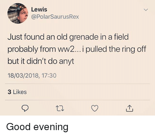 Memes, The Ring, and Good: Lewis  @PolarSaurusRex  Just found an old grenade in a field  probably from ww2... i pulled the ring off  but it didn't do anyt  18/03/2018, 17:30  3 Likes Good evening