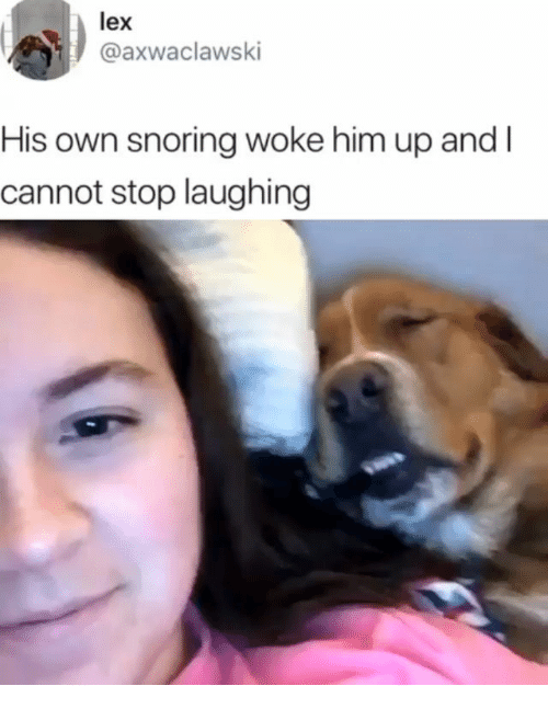 Memes, 🤖, and Him: lex  @axwaclawski  His own snoring woke him up and l  cannot stop laughing