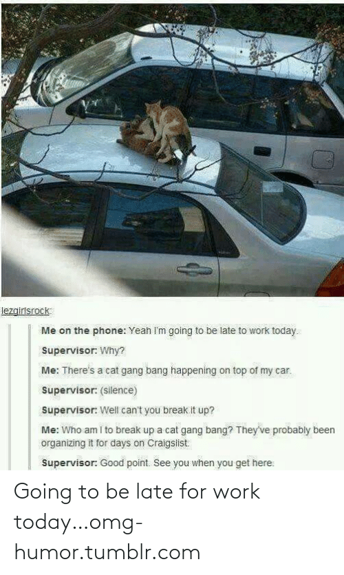 Cat Gang Bang: lezgirlsrock:  Me on the phone: Yeah I'm going to be late to work today.  Supervisor: Why?  Me: There's a cat gang bang happening on top of my car.  Supervisor: (silence)  Supervisor: Well can't you break it up?  Me: Who am i to break up a cat gang bang? They've probably been  organizing it for days on Craigslist  Supervisor: Good point. See you when you get here: Going to be late for work today…omg-humor.tumblr.com