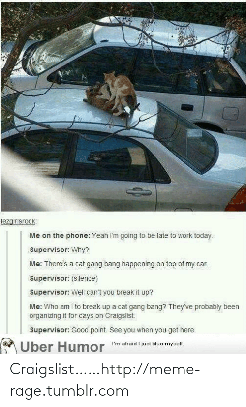 "Cat Gang Bang: lezgirlsrock:  Me on the phone: Yeah I'm going to be late to work today.  Supervisor: Why?  Me: There's a cat gang bang happening on top of my car.  Supervisor: (silence)  Supervisor: Well can't you break it up?  Me: Who am I to break up a cat gang bang? They've probably been  organizing it for days on Craigslist.  Supervisor: Good point. See you when you get here.  MÜber Humor ""'m afraid l just blue myself. Craigslist……http://meme-rage.tumblr.com"