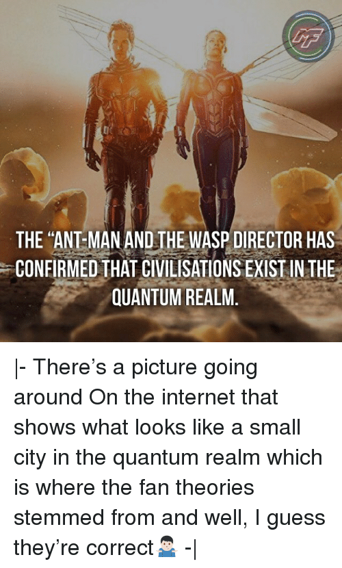 "the wasp: LF  THE ""ANT MAN AND THE WASP DIRECTOR HAS  CONFIRMED THAT CIVILISATIONS EXIST IN THE  QUANTUM REALM. 