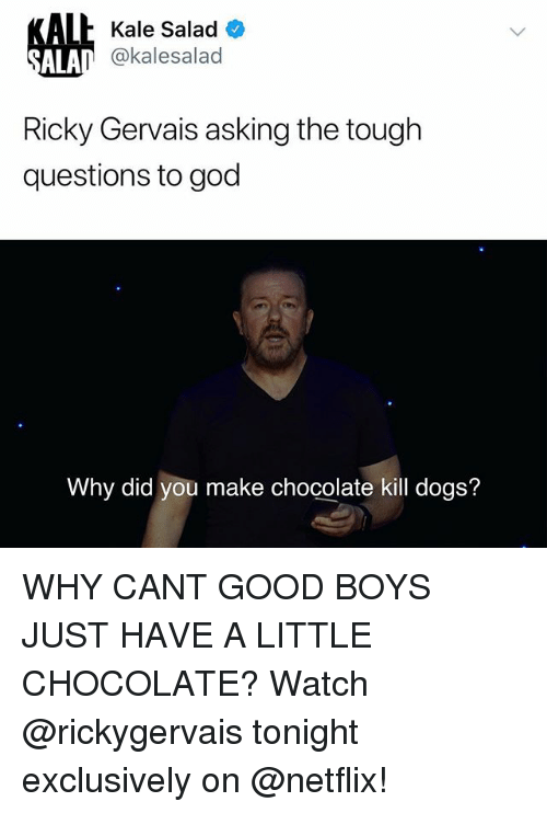 Ricky Gervais: lh Kale Salad O  @kalesalad  ALA  Ricky Gervais asking the tough  questions to god  Why did you make chocolate kill dogs? WHY CANT GOOD BOYS JUST HAVE A LITTLE CHOCOLATE? Watch @rickygervais tonight exclusively on @netflix!