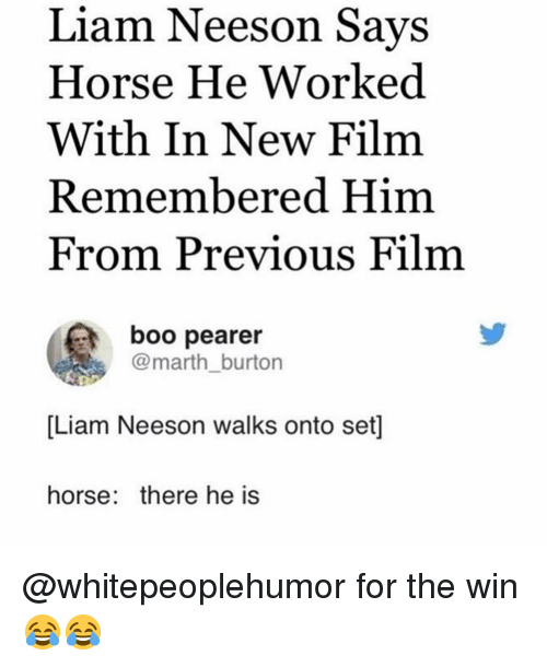 burton: Liam Neeson Savs  Horse He Worked  With In New Film  Remembered Him  From Previous Film  boo pearer  @marth_burton  [Liam Neeson walks onto set]  horse: there he is @whitepeoplehumor for the win 😂😂