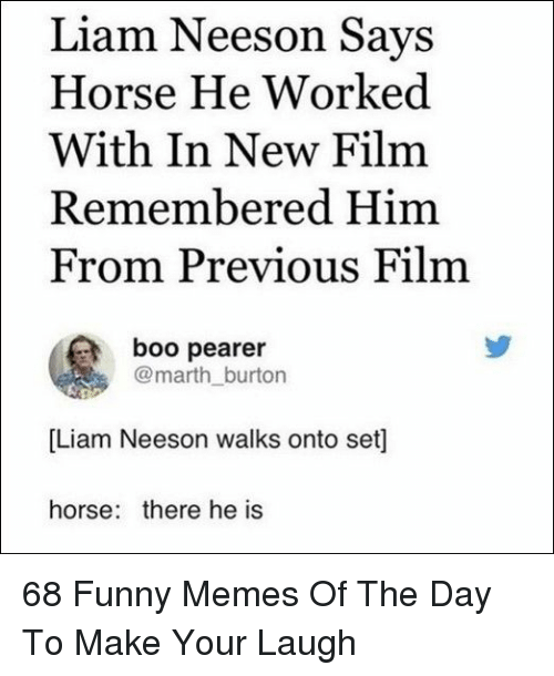 burton: Liam Neeson Says  Horse He Worked  With In New Film  Remembered Him  From Previous Film  boo pearer  @marth_burton  [Liam Neeson walks onto set]  horse: there he is 68 Funny Memes Of The Day To Make Your Laugh