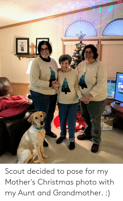 Garth: Lian  BABY  Garth Bro  CHRISTM  Tiyilher  215  COMFORTPRO Scout decided to pose for my Mother's Christmas photo with my Aunt and Grandmother. :)