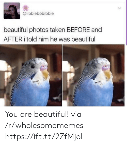you are beautiful: @libbiebobibbie  beautiful photos taken BEFORE and  AFTER told him he was beautiful You are beautiful! via /r/wholesomememes https://ift.tt/2ZfMjol