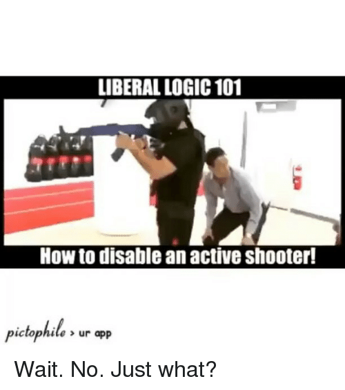 Logic, Memes, and Shooters: LIBERAL LOGIC 101  How to disable an active shooter!  pictophile, ur app Wait. No. Just what?