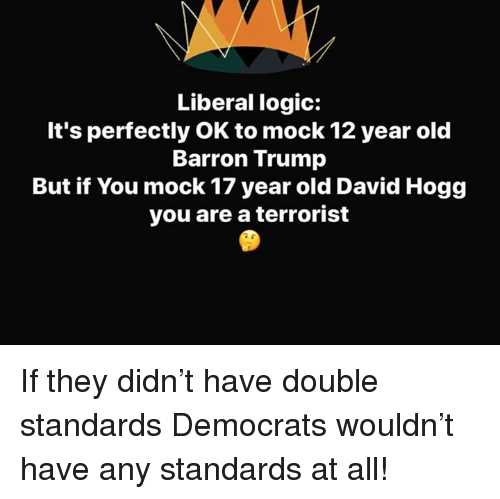 hogg: Liberal logic:  It's perfectly OK to mock 12 year old  Barron Trump  But if You mock 17 year old David Hogg  you are a terrorist If they didn't have double standards Democrats wouldn't have any standards at all!