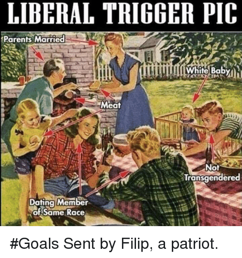 Dating, Goals, and Memes: LIBERAL TRIGGER PIC  Parents Married  Meat  Not  Transqender  Dating Member  of Same Race #Goals  Sent by Filip, a patriot.