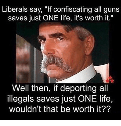 """Guns, Life, and One: Liberals say, """"If confiscating all guns  saves just ONE life, it's worth it.""""  Well then, if deporting all  illegals saves just ONE life,  wouldn't that be worth it??"""
