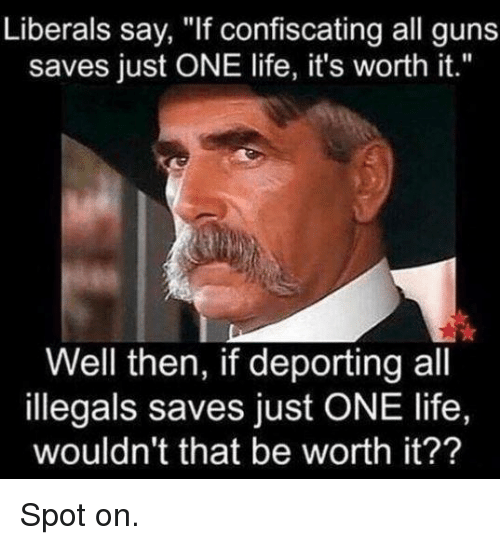 """Guns, Life, and One: Liberals say, """"If confiscating all guns  saves just ONE life, it's worth it.""""  Well then, if deporting all  illegals saves just ONE life,  wouldn't that be worth it?? Spot on."""
