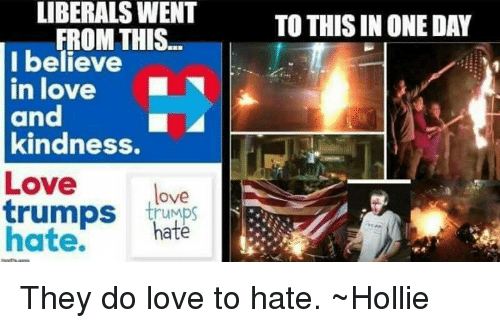 Image result for love trumps hate meme liberals