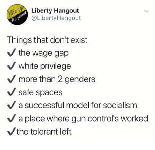 Memes, Socialism, and White: Liberty Hangout  @LibertyHangout  ol  Things that don't exist  / the wage gap  white privilege  more than 2 genders  safe spaces  V a successful model for socialism  / a place where gun control's worked  the tolerant left