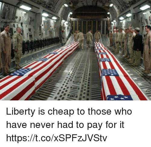 Memes, Liberty, and Never: Liberty is cheap to those who have never had to pay for it https://t.co/xSPFzJVStv