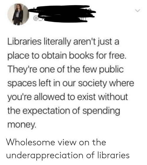 Libraries: Libraries literally aren't just a  place to obtain books for free.  They're one of the few public  spaces left in our society where  you're allowed to exist without  the expectation of spending  money. Wholesome view on the underappreciation of libraries