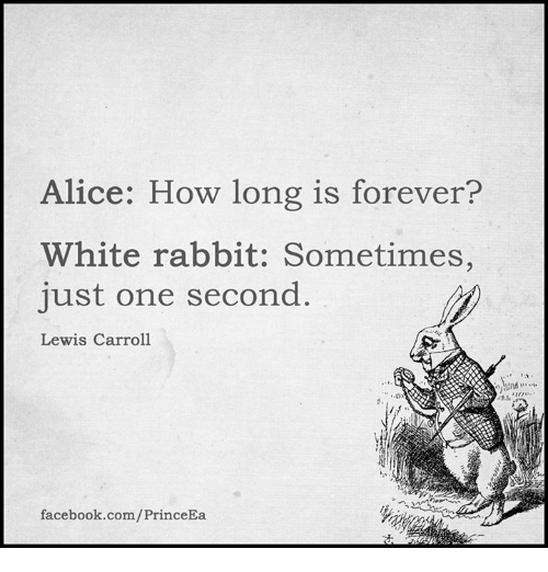 white rabbit: lice: How long is forever?  White rabbit: Sometimes,  just one second  Lewis Carroll  facebook.com/PrinceEa